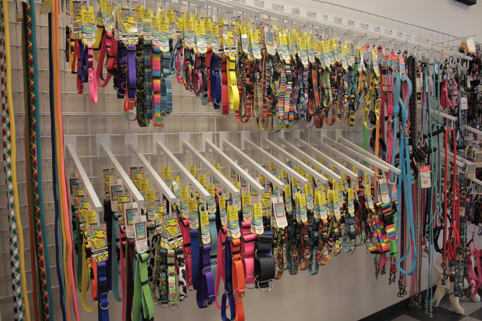 We stock a wide variety of fun and functional collars, leashes, and harnesses.
